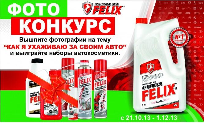 FELIX-action
